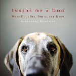 Everything a Dog Knows Is Through Its Nose