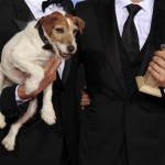 Oscars Snub Dog Star!